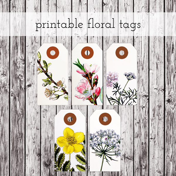 graphic about Free Printable Tags named Absolutely free Down load: Printable Floral Tags Â« packagery